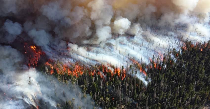 sonoma wildfires