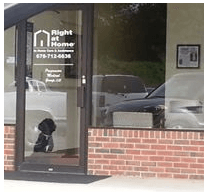 Therapy Dog Myla waiting for caregivers and clients at Right at Home East Atlanta