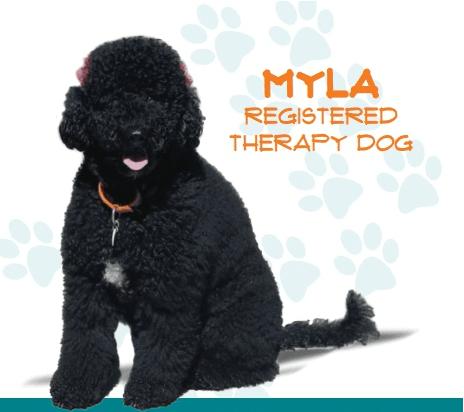 Myla, Registered Therapy Dog