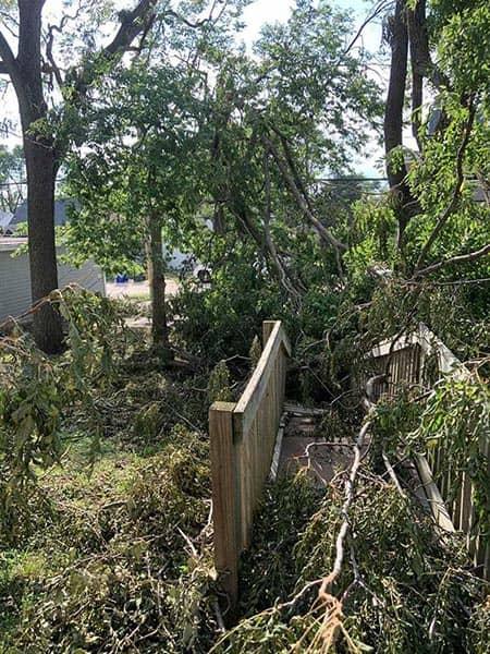 Broken trees and damage from the derecho in Cedar Rapids August 2020