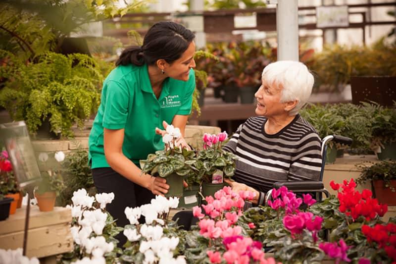 Female caregiver and female senior shopping for flower plants