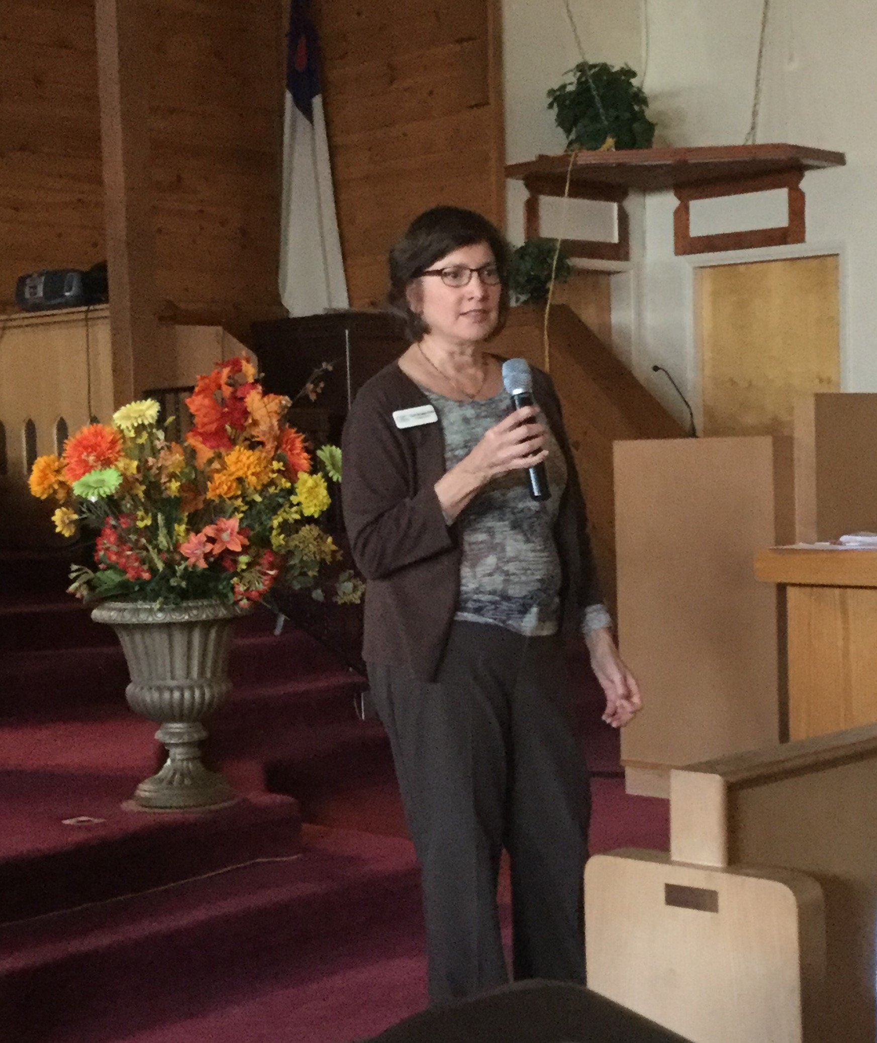 Carol speaking to a church group