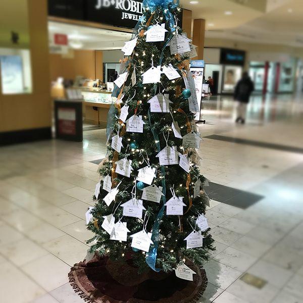 Necessity Tree 2016 for Seniors