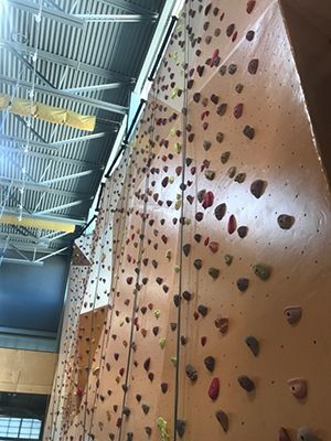 Ability360 Climbing Wall