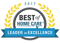 Leader In Excellence 2017